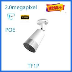 Camera IP POE 2.0mp dahua TF1P