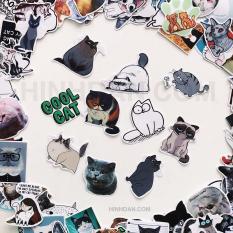 Bộ Sticker Chủ Đề Mèo, Cat, Boss, Meow (2019) Hình Dán Decal Chất Lượng Cao Chống Nước Trang Trí Va Li Du Lịch, Xe Đạp, Xe Máy, Laptop, Nón Bảo Hiểm, Máy Tính Học Sinh, Tủ Quần Áo, Nắp Lưng Điện Thoại