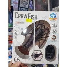 Đồ chơi điều khiển Crawfish cho bé