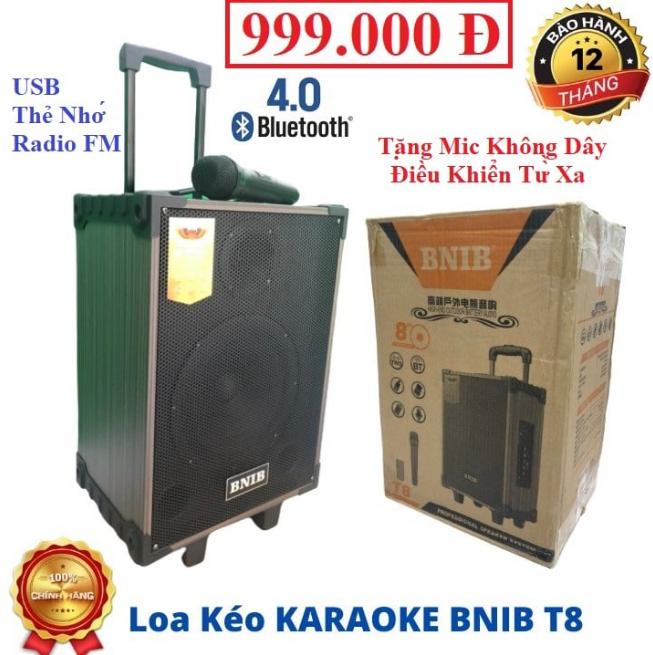 Loa Kéo BNIB T8 Bass 20CM :Tặng Micro Ko Dây – Điều Khiển – Sạc . Có : Bluetooth , USB, Thẻ Nhớ, AV, Đài FM