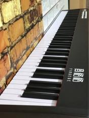 Piano – Piano Điện – Đàn Piano điện Yingege