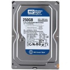 Ổ cứng 250GB HDD WD Sata III dùng cho máy tính bàn – Bảo hành 1 tháng