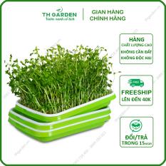 Khay Trồng Rau Mầm Thủy Canh Th Garden – Khay Nhựa Trồng Rau Sạch Thông Minh – Nhựa Pp Nguyên Sinh An Toàn Không Độc Hại
