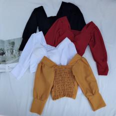 Chuyên sỉ/áo kiểu nhúng thân sau form dưới 45 kg trở lại dáng áo croptop