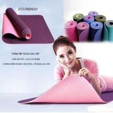 Thảm tập yoga kích thước 65cmx175cm loại 1 lớp dày 8mm
