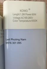 Tuýp led bán nguyệt 1m2 60w chip led SamSung