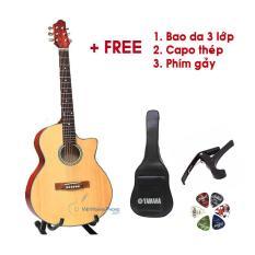 Đàn Guitar Acoustic SV650 – Đàn Guitar dành cho người mới học – Tặng Bao da + Capo + Phím gảy – Việt Hoàng Phong
