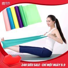 Dây thun tập yoga LK221