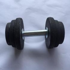 tạ tay tháo ráp, tạ lắp ráp, tạ tay 10kg, tạ gang 10kg, 1 cục tạ lắp ráp 10kg phi 19 mm