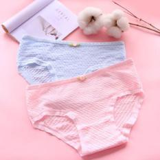 Set 10 quần lót Cotton thông thoáng Freesize dưới 53kg ( nhiều màu )