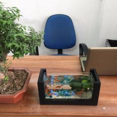 Bể cá phong thủy ( tặng kèm phụ kiện : đá + cây nhựa)
