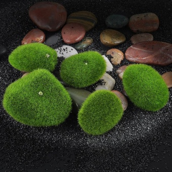 Broadfashion 5 Pcs Artificial Green Grass Moss Foam Stone MicroLandscape Terrariums Decor - intl