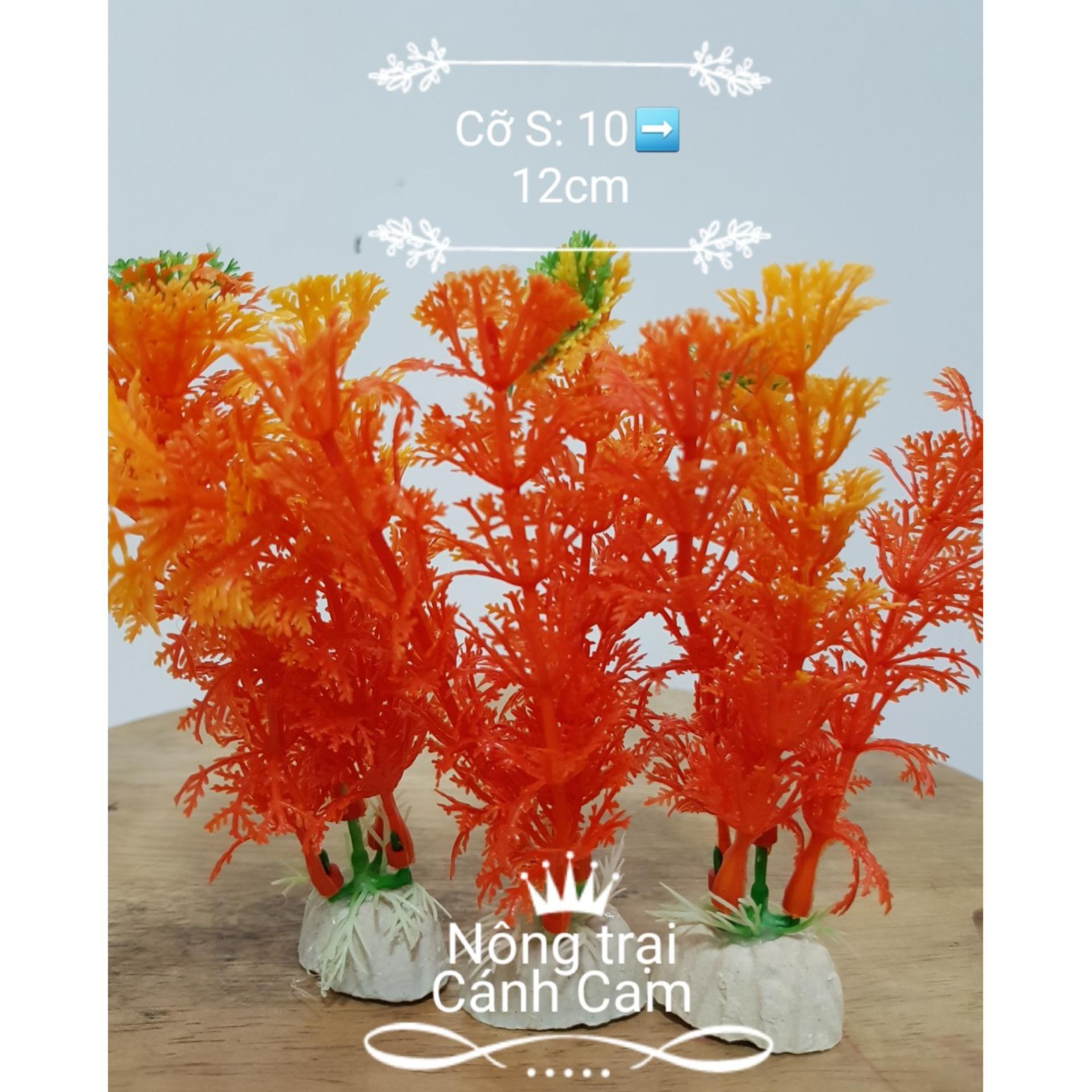Cây cảnh nhựa hồ cá RẺ Cỡ S – Bộ 3 cây ngẫu nhiên
