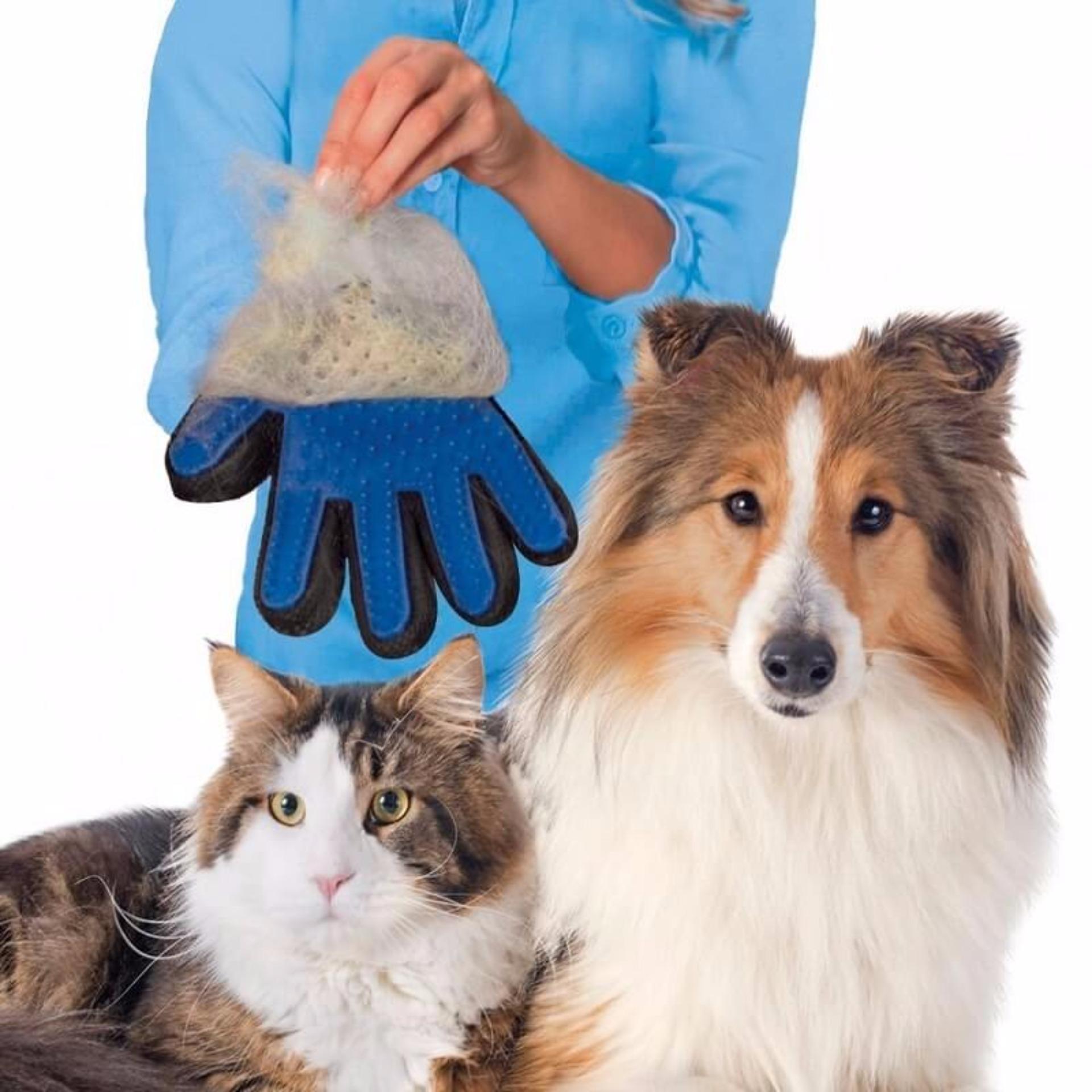 Đánh Giá Găng tay chải lông thú cưng