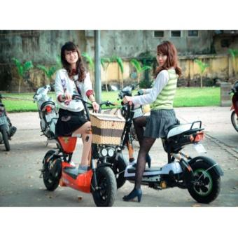 Giỏ xe đạp điện M133, M133s