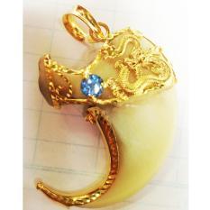 Mặt dây chuyền móng cọp bọc vàng 14k (Vàng)