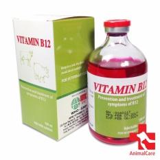 Phòng, Trị Chứng Thiếu Hụt – Vitamin B12 100ml