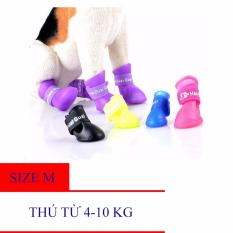 Ủng cao su đi mưa cho chó , giày cao su đi mưa cho chó – Size M