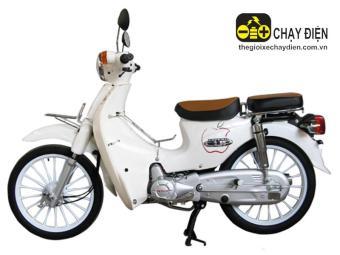 Xe máy Espero Cub 81