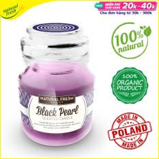 Nến tinh dầu thơm thiên nhiên cao cấp Natural Fresh SJ130 – Scented Candle with essential oils