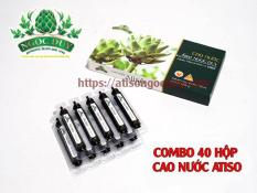 Combo Khuyến mãi 40 hộp ống uống atiso ngọc duy