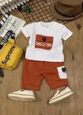 (GIÁ 1 BỘ ĐỒ .GIÁ TÂN XƯỞNG SIÊU RẺ -HỔ TRỢ PHÍ VẬN CHUYỂN)bộ quần áo TÚI HỘP C cho trẻ em.quần áo cho bé trai từ 8kg đến 26kg trai y mẫu, đáng yêu cho bé-