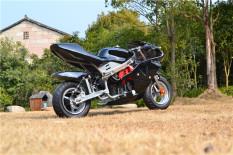 xe moto mini 50cc- xe ruồi – xe tam mao