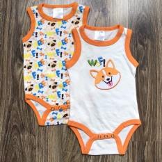 Quần áo trẻ em – Combo 2 áo liền quần cotton cho bé sơ sinh đến 9 tháng