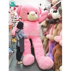 Gấu Bông Teddy Hồng Mịn Khổng Lồ 3m5