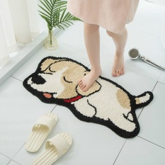 Thảm lau chân ❤️ thảm chùi chân lông mềm kháng khuẩn chống trơn trượt nhà tắm nhà bếp thấm nước 40x60cm