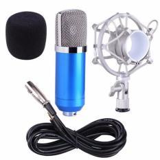 Mic thu âm BM-900, BM-999 MU