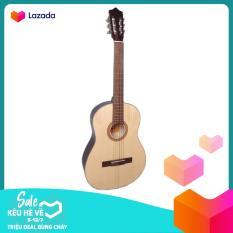 Đàn guitar Classic DG08C natural + Bao da, Tặng phụ kiện Duy Guitar – Shop đàn ghita cổ điển giá tốt dành cho bạn mới tập