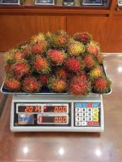 Cân Điện Tử UTe 15kg – 30kg ( Bảo Hành 12 Tháng