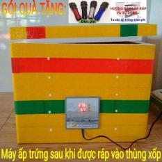 Máy ấp trứng gà mini Ánh Dương P100 – tặng 01 đèn pin soi trứng