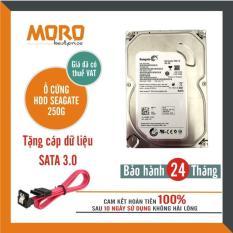 Ổ cứng HDD Seagate 250GB – Nhập khẩu – Bảo hành 24 tháng