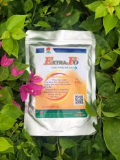 Extra – Fo nguyên chất Sản phẩm tốt từ gạo lứt, tinh chất màng gạo lứt, bột cám gạo lứt, gạo lứt rang – Tốt cho người bị tiểu đường, hỗ trợ điều tri các bệnh mãn tính, ung thư…