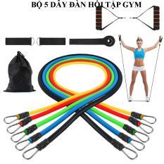 Dụng cụ tập gym, Dây đàn hồi tập gym, Dây ngũ sắc tập gym, Dụng cụ tập yoga, Đồ tập gym, Máy tập thể dục đa năng, Bộ 5 dây đàn hồi tập thể hình gọn nhẹ, có tính đàn hồi cao, bền, an toàn. Bảo hành 1 đổi 1