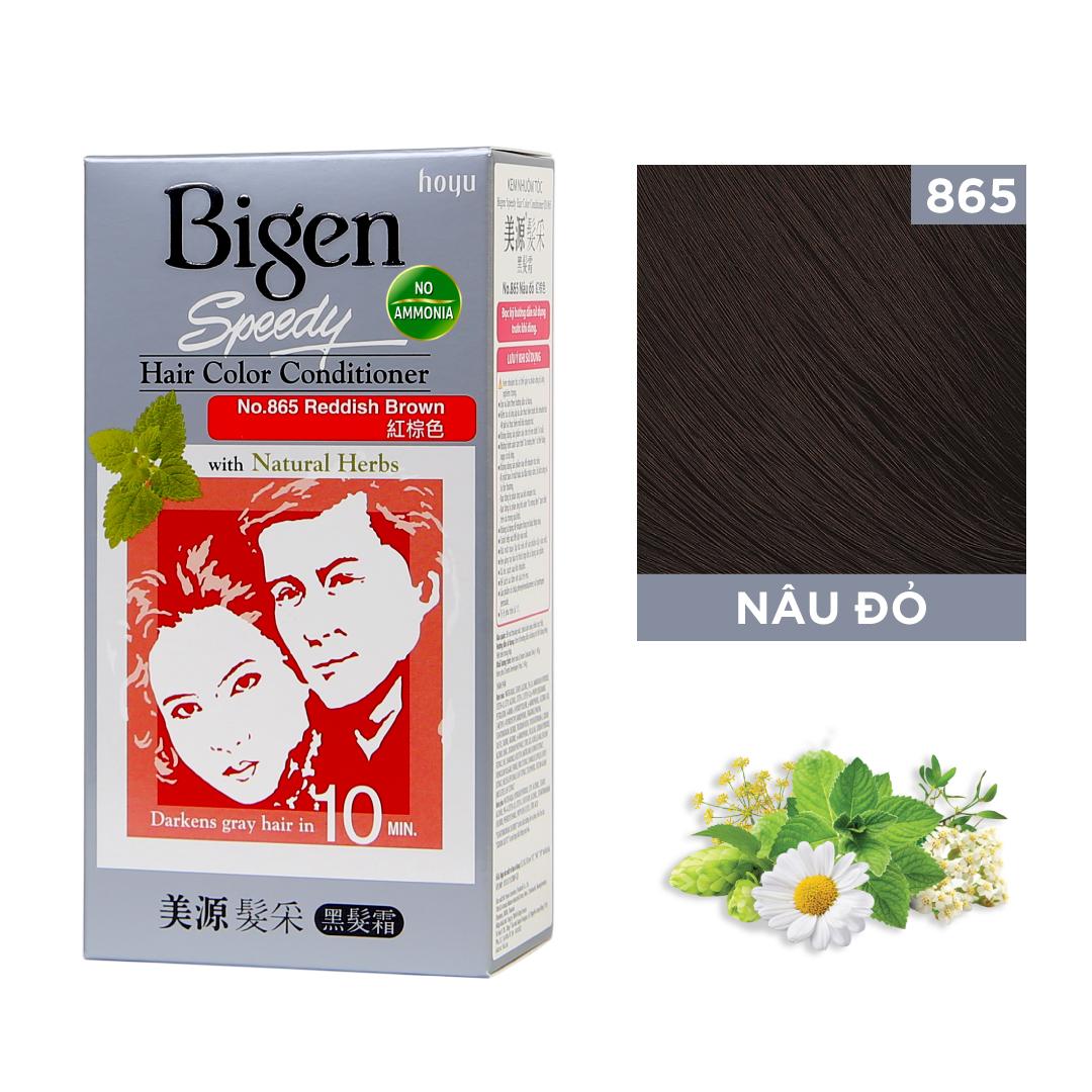 Combo 2 Hộp Thuốc nhuộm dưỡng tóc phủ bạc thảo dược Bigen Conditioner Thương hiệu Nhật Bản 80mlx2 dạng kem
