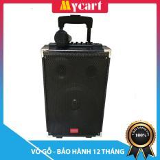 Loa kéo hát Karaoke di động Vỏ gỗ Tcare Z8 – Kèm 01 Micro