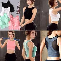 C7 Mẫu mới 2019 siêu hot áo bra thể thao xuất Hàn nhiều màu kiểu lưới độc đáo tập gym, yoga form chuẩn gợi cảm