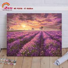 Tranh sơn dầu số hóa tô màu theo số Gam Tranh phong cảnh cánh đồng hoa oải hương lavender màu tím PC0785