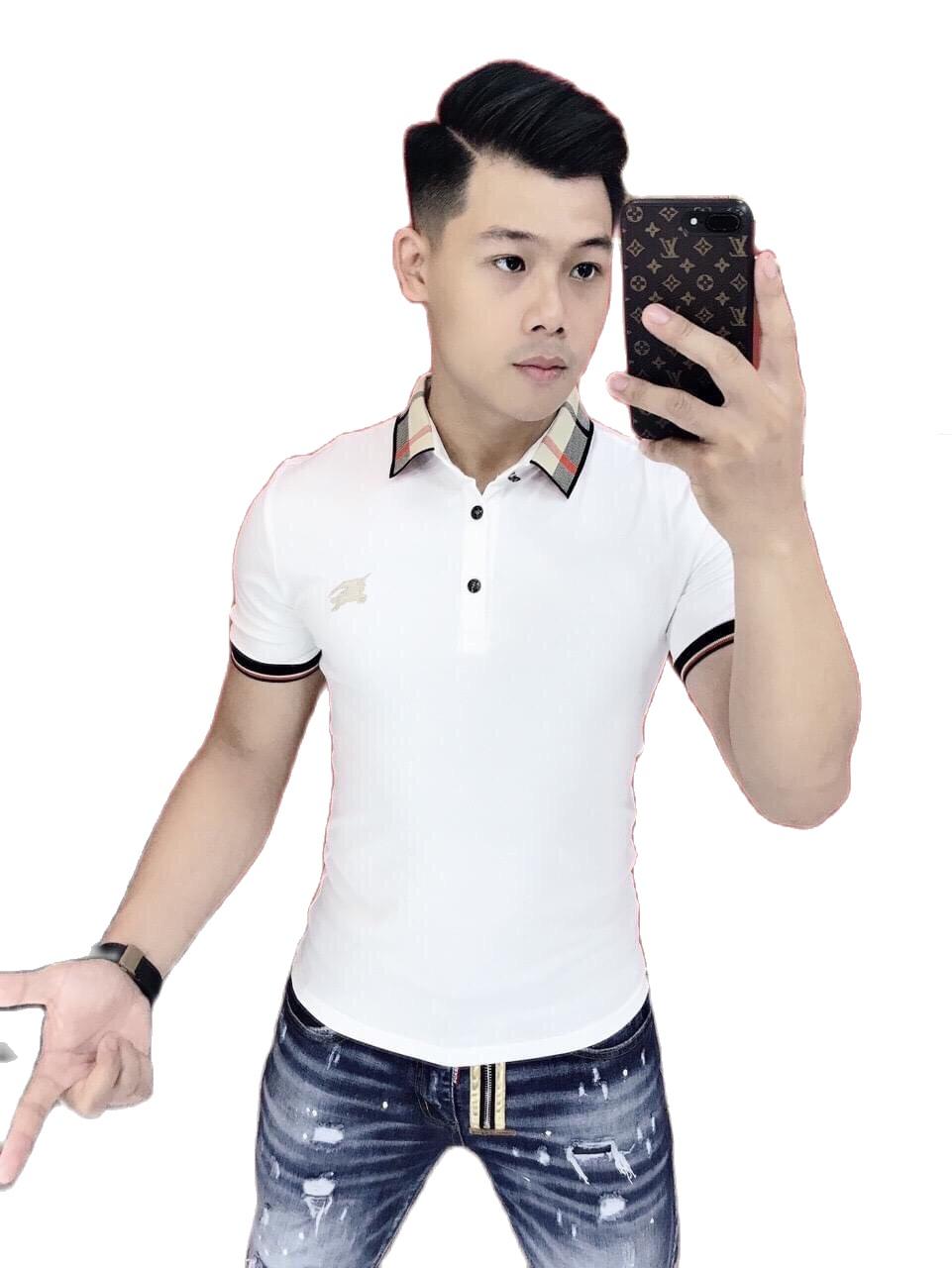 Áo thun nam cổ bẻ cao cấp vải cotton siêu co dãn hàng chuẩn shop ( ảnh thật shop tự chụp ) kkk1