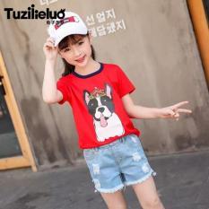 Áo thun ngắn tay in hình hoạt hình thời trang bé gái size đại 25-35kg