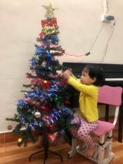 Cây thông Noel cao 1.5m trang trí mùa Giáng sinh