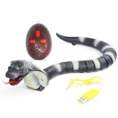 Rắn đồ chơi, Rắn Robot Điều Khiển Từ Xa, rắn robot sử dụng pin sạc, có nhiều màu sắc