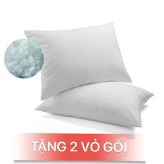 Combo 2 gối ngủ (50x70cm), tặng 2 vỏ gối cùng size, hàng VN cao cấp