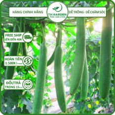 Hạt Giống Mướp Hương TH Garden – Hạt Giống Dễ Trồng Dễ Chăm Sóc, Rất Thơm Ngọt, Năng Suất Cao