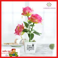 Chậu hoa hồng giả để bàn 3 bông hồng lớn ,chậu hoa để bàn, chậu cây cảnh giả, chậu cây giả mini, cây giả, cây giả đẹp, cây giả để bàn, cây giả tiểu cảnh, cây giả trang trí, cây giả decor MS 32- Lanion House