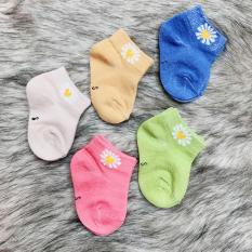 Set 5 đôi tất vớ cổ thấp cho bé 0-2 tuổi chất cotton nhẹ mát 5 màu phối hoa cúc hottrend xinh xắn BBShine – T014