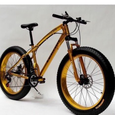 Xe đạp địa hình bánh béo Lebron